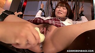 Tied up Asian schoolgirl has her squirting bush viciously toyed